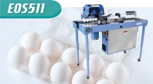 Peripheral Devices Egg Pack Sealing Machine E0S511